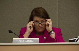 Toni Atkins - Day 1 or 2 photo