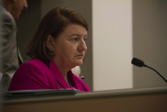 Toni Atkins - Day 1 photo