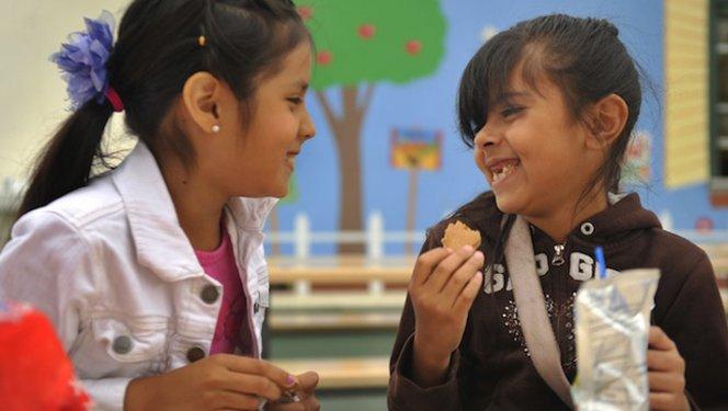 sugar schools 1 photo
