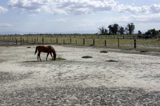 ag drought lawsuit photo