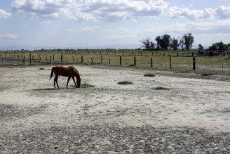 ag drought lawsuit photo